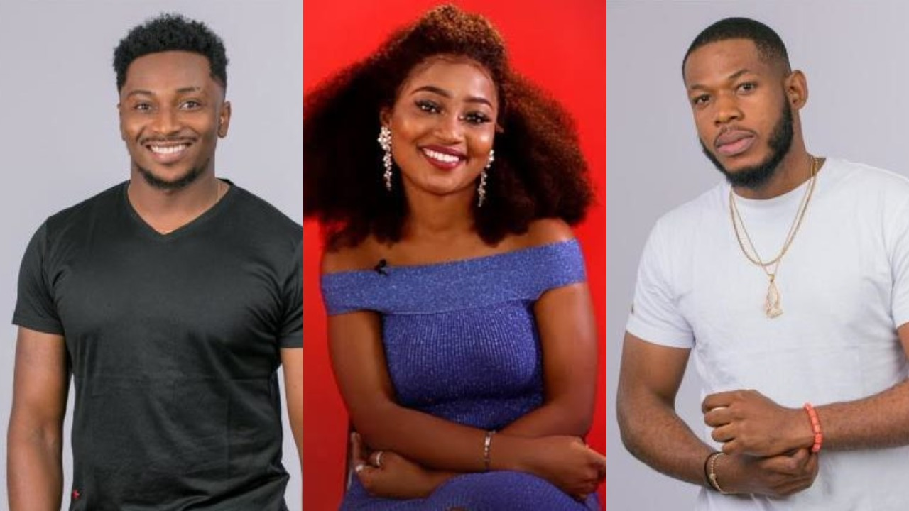 How To Make Money From Watching Big Brother Naija Every Day